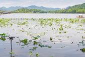 Bezaubernde West Lake in Hangzhou — Stockfoto