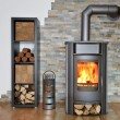 Wood fired stove with fire-wood — Stock Photo #71668537