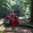 Tractor in forest during work — Stockfoto #71670651