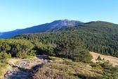 View from Babia Gora, Beskidy, Poland — Stock Photo
