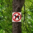 Постер, плакат: Sign prohibiting dog walking in a botanical garden