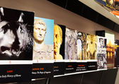Gallery of books on the history of the Roman Empire in Coliseum, — Stock Photo