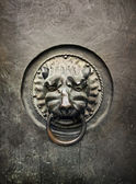Antique door knocker in the form of a lion's head on old metal d — Stock Photo