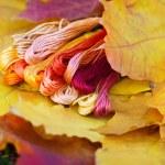 Colors of autumn, multicolor yarns looks like autumn leaves — Stock Photo #64815749