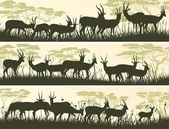 Horizontal banners of wild antelope in African savanna. — Vettoriale Stock