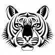 Realistic tiger face looks ahead — Stock Vector #69490249