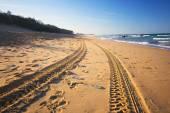 Playa por la tarde. — Foto de Stock