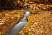 Güzel şelale — Stok fotoğraf