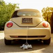Just married — Stock Photo #59207269