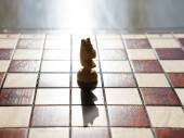 Chess horse on a board  — Stock Photo