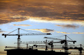 Cranes at dusk — Stock Photo