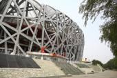 """Bird's Nest"" Olympic Stadium — Stock Photo"