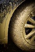 Otomobilin tekerlek çamurlu — Stok fotoğraf