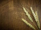 Wheat grain on the wood — Stock Photo