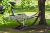 View of hammock  on a sunny summer day — Stock Photo