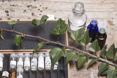 Bottles with homeopathy globules — Stock Photo