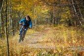 Extreme cyclist autumn — Foto de Stock