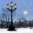 Park alley in snow with steel light. — Stock Vector #60451077