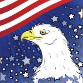 American eagle — Stock Vector
