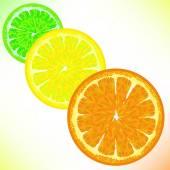 Lime Lemon Orange — Stock Vector