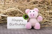 Birthday card — Stock Photo