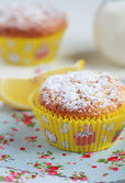 Close-up of two homemade lemon muffins with a jug of milk, selec — Stock Photo