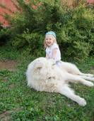 Little cute toddler girl playing with her big white shepherd dog — Stock Photo