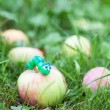 Plasticine world - little homemade green caterpillar is crawling — Stock Photo #55107515