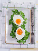 Hard-boiled eggs on a plate — Stock Photo