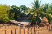 Cambodian farm — Stock Photo