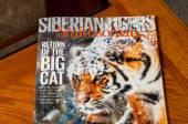 Tiger Smithsonian — Stockfoto