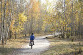 Little boy riding a bike on the road in the autumn forest. — Stock Photo
