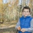 Little smiling boy in autumn forest. — Stock Photo #56709383