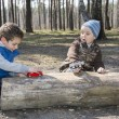In the forest, sitting on a log, two boys, one playing with a to — Stock Photo #58348603