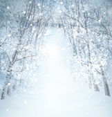 Winter wonderland landscape. — Stock Photo