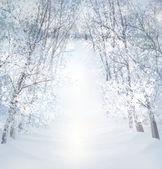 Winter snow landscape. — Stock Vector