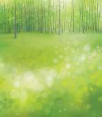 Spring  forest background. — Stock Vector