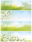 Spring banners with blossoming branch — Stock Vector