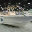 Постер, плакат: Robalo boat on display