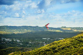 Hang Glider over the Valley — Stock Photo