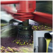 Oil mill - olive oil production — Stock Photo