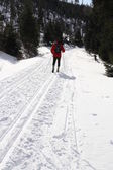 Ski track — Stock Photo