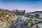 Frosty Morning on the Moor — Stock Photo
