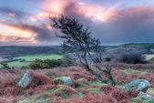 Sunrise in Cornwall — Stock Photo