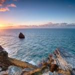 The North Cornwall Coastline — Stock Photo #64750921