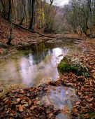 Autumn scene with water — Foto Stock