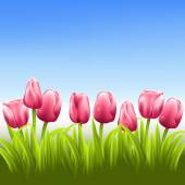 Pink tulips with blue sky vector background — Wektor stockowy