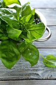 Leaves of fresh green basil — Stock Photo
