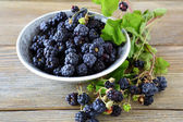 Black  blackberries in a bowl — Stock Photo