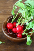 Radish with leaves in a bowl, — Stock Photo